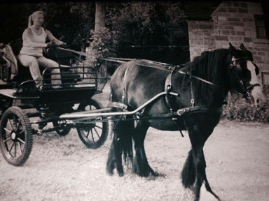 georgian wagonette